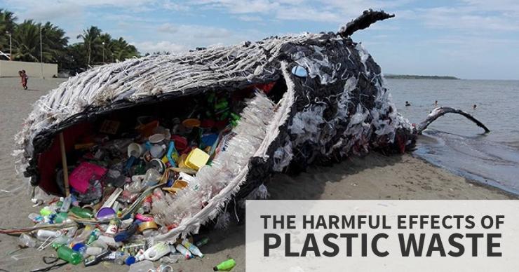 Plastic_Pollution1